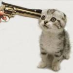 Rejtélyes macskagyilkosságok Londonban
