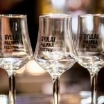 Méltó módon mutatkoznak be Gyulán a magyar pálinkák