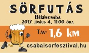 sorfutas_2017_ledfal-01