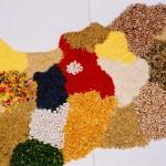 A legnagyobb bizalom, hogy a vásárlók beengedik a PACO termékeket a konyhájukba