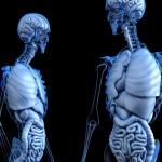 Ezért fontos, hogy ismerd a tested!