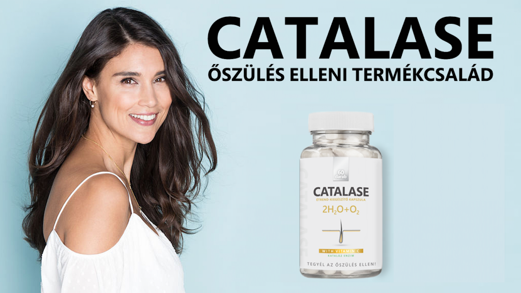 catalase_girlwall2 - Copy